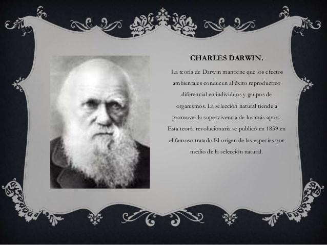 パニック障害 ダーウィン