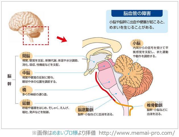 オルゴール療法 脳幹のメカニズム