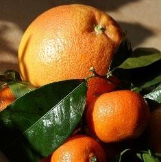 アロマ オレンジスイート